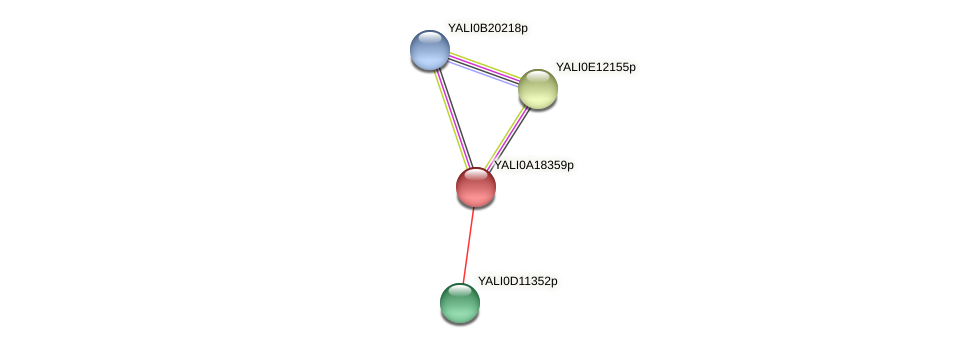 XP_500199.1 protein (Yarrowia lipolytica) - STRING interaction network