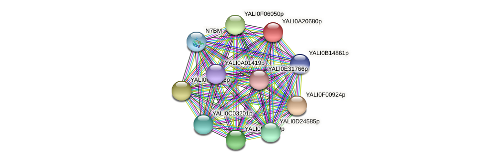 XP_500298.2 protein (Yarrowia lipolytica) - STRING interaction network