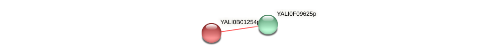 XP_500378.1 protein (Yarrowia lipolytica) - STRING interaction network