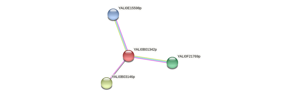 XP_500382.1 protein (Yarrowia lipolytica) - STRING interaction network