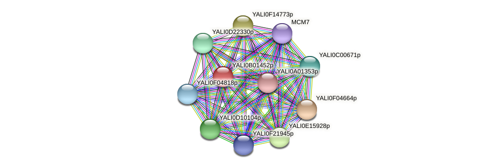 XP_500387.1 protein (Yarrowia lipolytica) - STRING interaction network