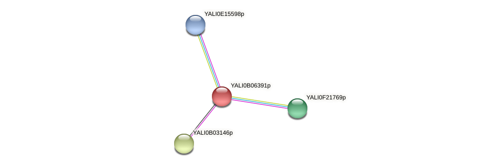 XP_500566.1 protein (Yarrowia lipolytica) - STRING interaction network