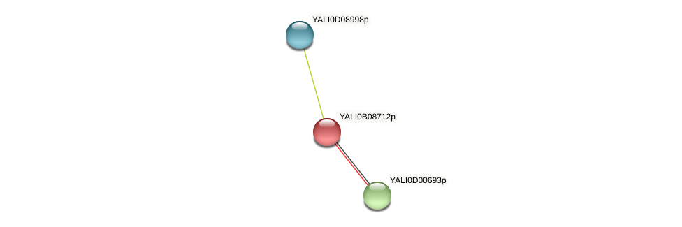 XP_500650.1 protein (Yarrowia lipolytica) - STRING interaction network
