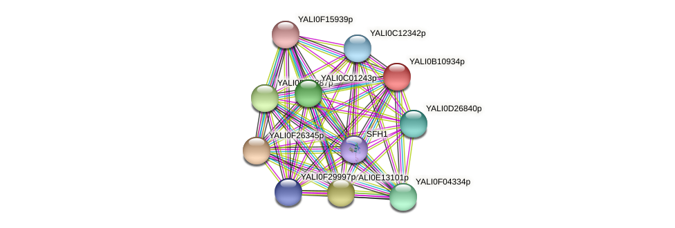 XP_500739.1 protein (Yarrowia lipolytica) - STRING interaction network