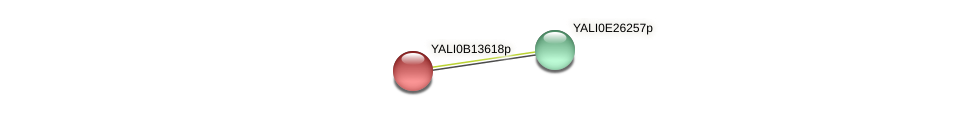 XP_500846.1 protein (Yarrowia lipolytica) - STRING interaction network