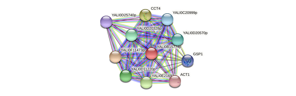 XP_500945.2 protein (Yarrowia lipolytica) - STRING interaction network