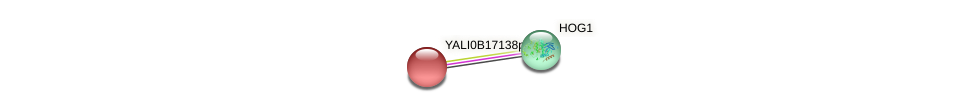 XP_501003.1 protein (Yarrowia lipolytica) - STRING interaction network