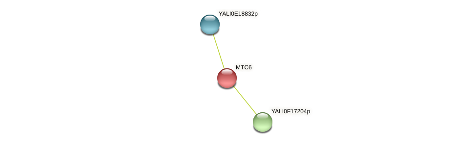 MTC6 protein (Yarrowia lipolytica) - STRING interaction network