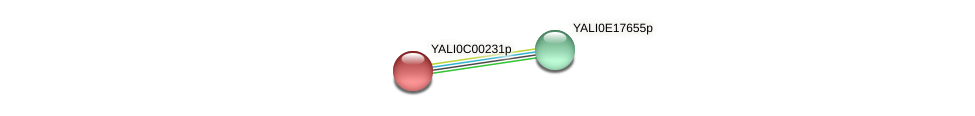 XP_501276.1 protein (Yarrowia lipolytica) - STRING interaction network