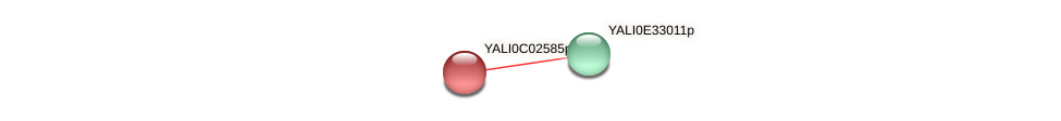 XP_501366.1 protein (Yarrowia lipolytica) - STRING interaction network