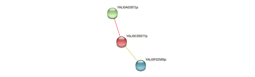 XP_501479.1 protein (Yarrowia lipolytica) - STRING interaction network