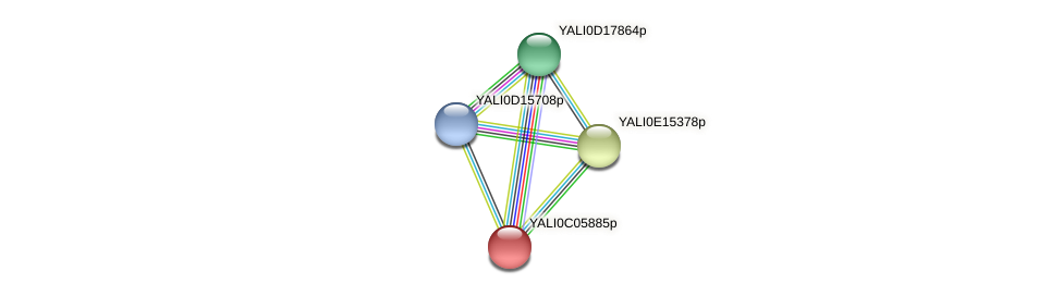 XP_501493.1 protein (Yarrowia lipolytica) - STRING interaction network