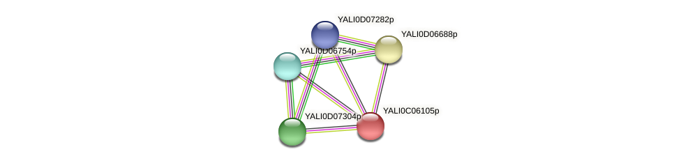 XP_501503.1 protein (Yarrowia lipolytica) - STRING interaction network