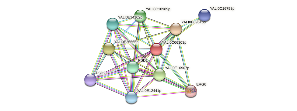 XP_501512.1 protein (Yarrowia lipolytica) - STRING interaction network