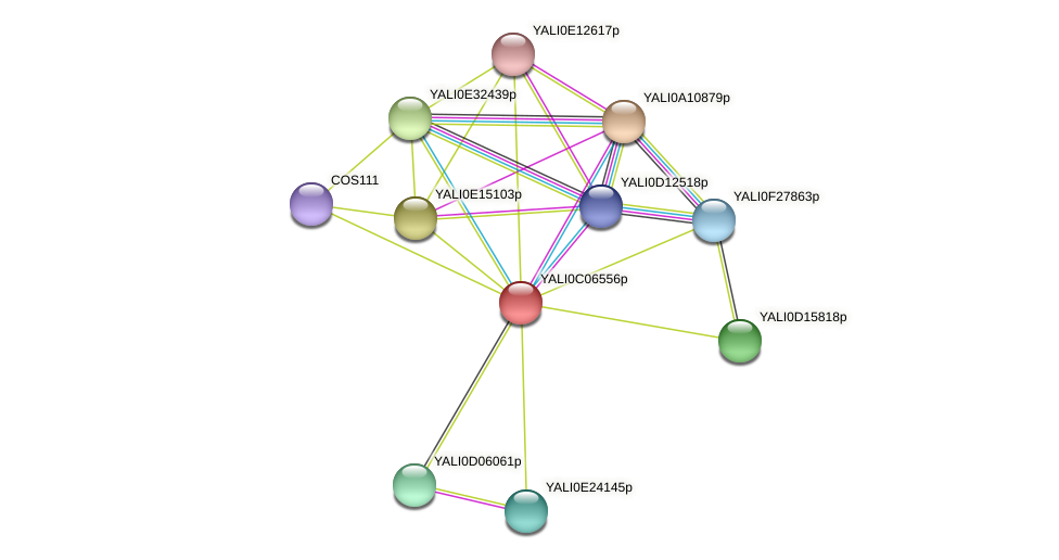 XP_501522.2 protein (Yarrowia lipolytica) - STRING interaction network