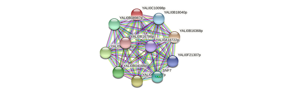 XP_501669.2 protein (Yarrowia lipolytica) - STRING interaction network