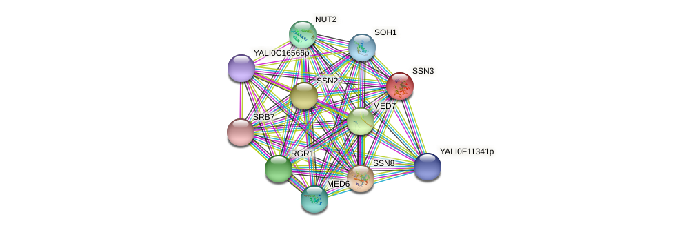SSN3 protein (Yarrowia lipolytica) - STRING interaction network