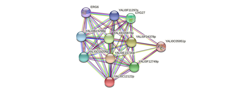 XP_501748.1 protein (Yarrowia lipolytica) - STRING interaction network