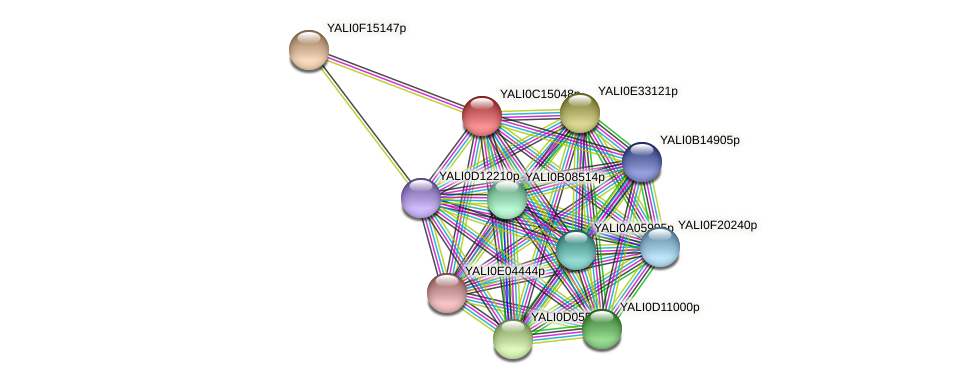 XP_501851.1 protein (Yarrowia lipolytica) - STRING interaction network