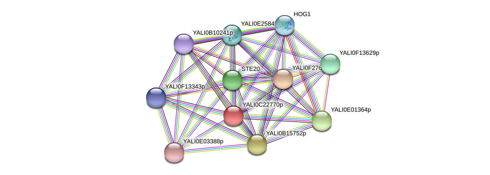 XP_502152.1 protein (Yarrowia lipolytica) - STRING interaction network