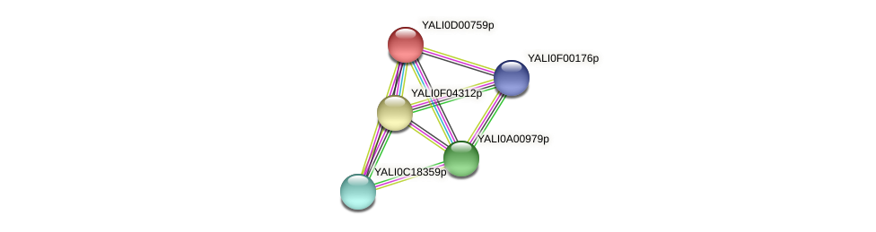 XP_502255.1 protein (Yarrowia lipolytica) - STRING interaction network