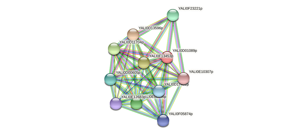 XP_502270.1 protein (Yarrowia lipolytica) - STRING interaction network