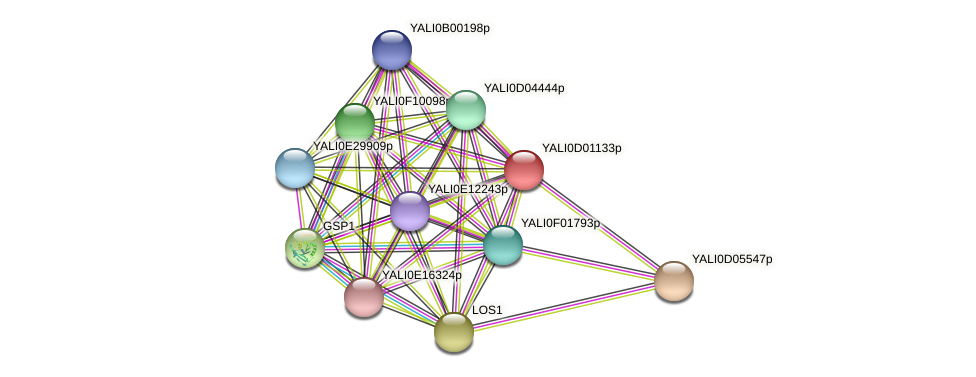 XP_502272.1 protein (Yarrowia lipolytica) - STRING interaction network
