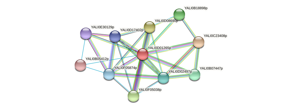 XP_502278.1 protein (Yarrowia lipolytica) - STRING interaction network