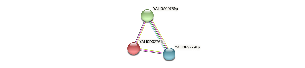 XP_502339.1 protein (Yarrowia lipolytica) - STRING interaction network