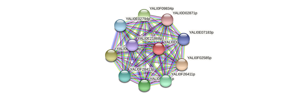 XP_502378.1 protein (Yarrowia lipolytica) - STRING interaction network