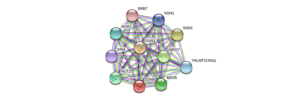 SSN8 protein (Yarrowia lipolytica) - STRING interaction network