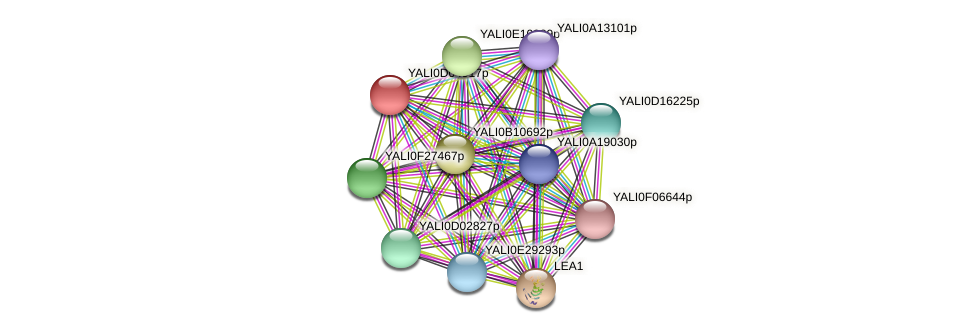 XP_502423.2 protein (Yarrowia lipolytica) - STRING interaction network