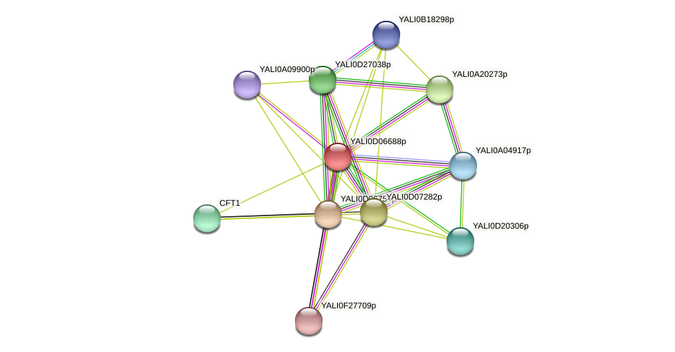 XP_502497.1 protein (Yarrowia lipolytica) - STRING interaction network