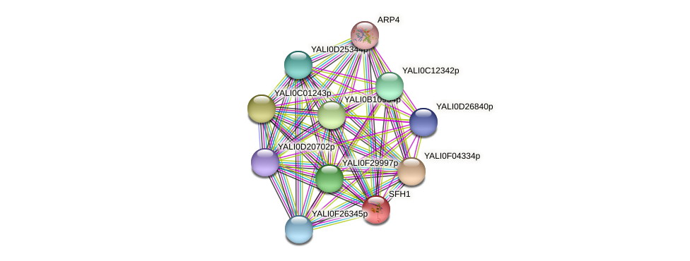 SFH1 protein (Yarrowia lipolytica) - STRING interaction network