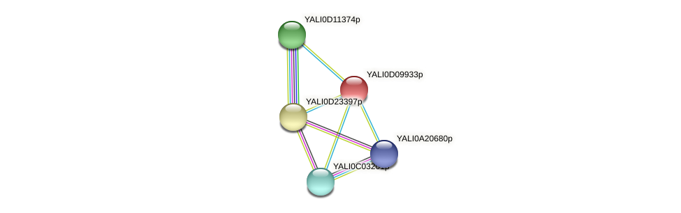 XP_502637.1 protein (Yarrowia lipolytica) - STRING interaction network