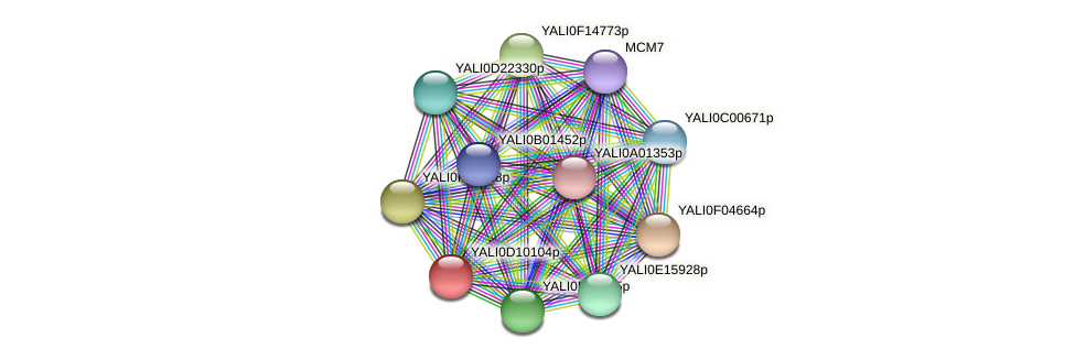 XP_502645.1 protein (Yarrowia lipolytica) - STRING interaction network