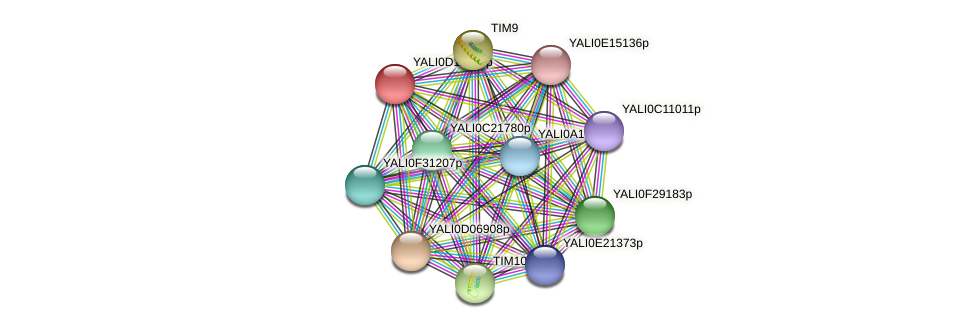 XP_502705.2 protein (Yarrowia lipolytica) - STRING interaction network