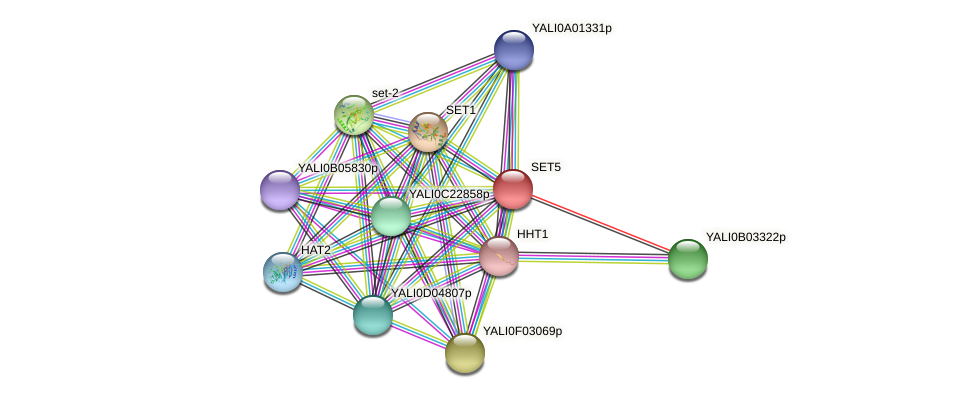 SET5 protein (Yarrowia lipolytica) - STRING interaction network