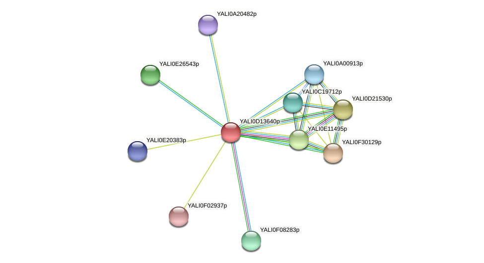 XP_502796.1 protein (Yarrowia lipolytica) - STRING interaction network