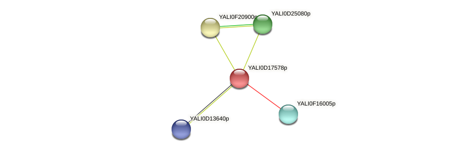 XP_502946.1 protein (Yarrowia lipolytica) - STRING interaction network
