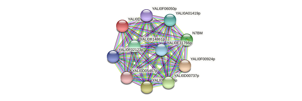 XP_503013.2 protein (Yarrowia lipolytica) - STRING interaction network