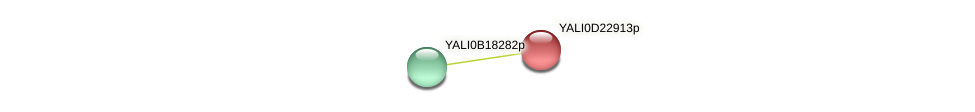 XP_503169.1 protein (Yarrowia lipolytica) - STRING interaction network
