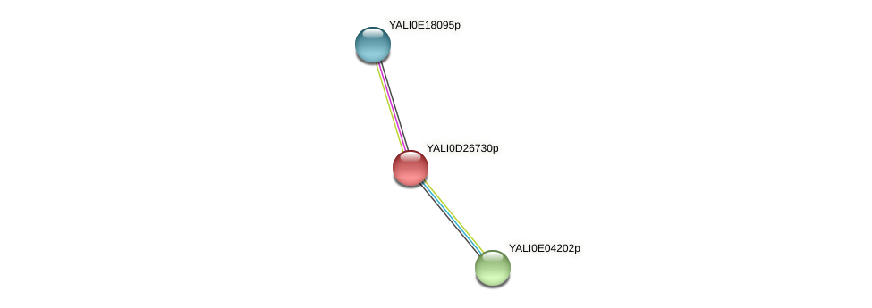 XP_503330.1 protein (Yarrowia lipolytica) - STRING interaction network