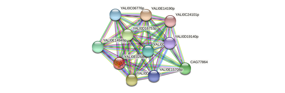 XP_503469.1 protein (Yarrowia lipolytica) - STRING interaction network