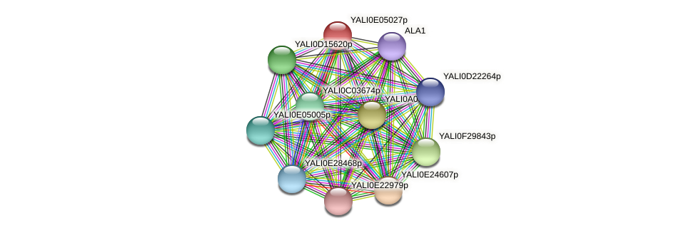 XP_503566.1 protein (Yarrowia lipolytica) - STRING interaction network