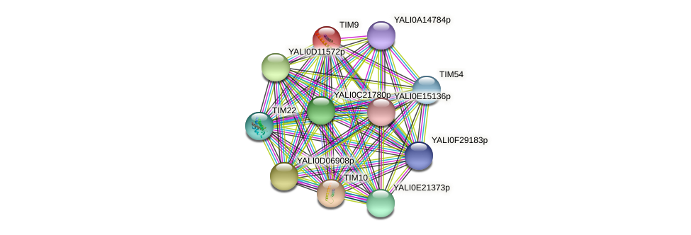 TIM9 protein (Yarrowia lipolytica) - STRING interaction network