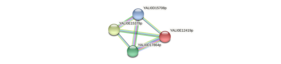 XP_503862.1 protein (Yarrowia lipolytica) - STRING interaction network