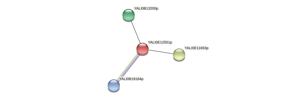 XP_503868.2 protein (Yarrowia lipolytica) - STRING interaction network