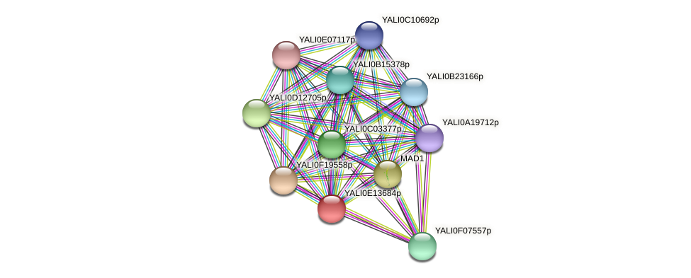 XP_503912.1 protein (Yarrowia lipolytica) - STRING interaction network