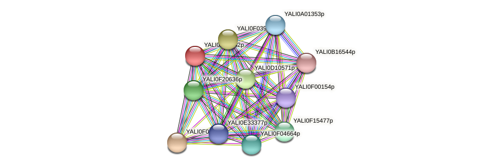 XP_503990.1 protein (Yarrowia lipolytica) - STRING interaction network